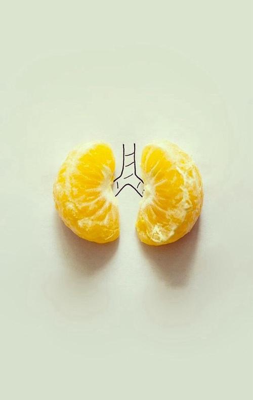 polmoni mandarini